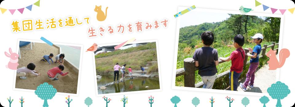 兵庫県宝塚市の放課後等デイサービス。小学生から高校生までが対象です。